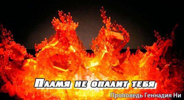 Пламя не опалит тебя