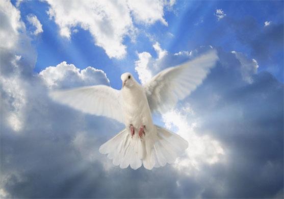 Откровение, полученное в реанимации. Пастор Геннадий Ни